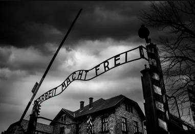What We Don't Know About the Holocaust